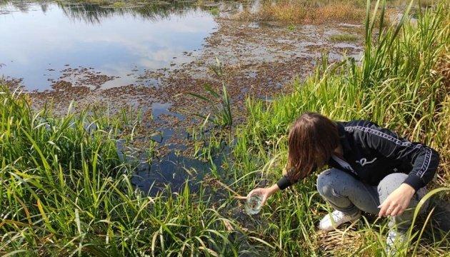 На Житомирщині вперше в Україні виявили тропічну ряску, яка могла потрапити в річку через перелітних птахів. ФОТО