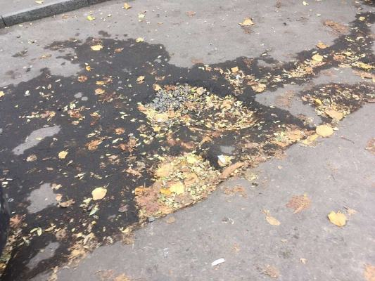 Житомиряни скаржаться на розбиті тротуари на вулиці Князів Острозьких. ФОТО