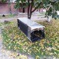В Овручі через сильне задимлення в квартирі чоловік вискочив через вікно. ФОТО
