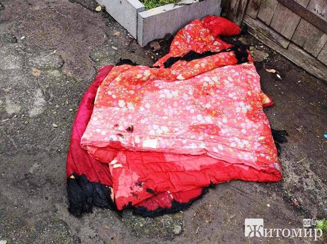 У селі Житомирської області горіла літня кухня: дитина бавилась з сірниками. ФОТО