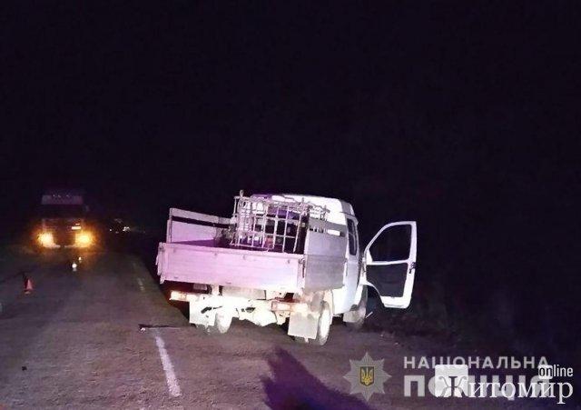 На автодорозі Словечне - Овруч ГАЗ на смерть збив чоловіка. ФОТО