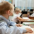 Скільки шкіл у Житомирській області перебувають на дистанційному навчанні