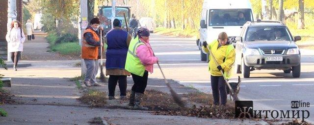 У Житомирі - генеральне прибирання опалого листя. ВІДЕО. ФОТО
