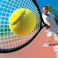 Как выбрать школу тенниса: основные критерии