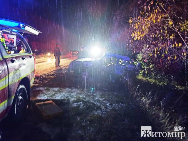 На Житомирщині DAF в'їхав у дерево, рятувальники деблокували водія. ФОТО