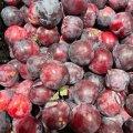 У житомирських гастрономах з'явилися смачні осінні сливки. ФОТО