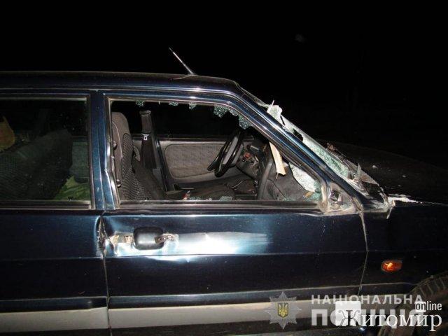 На автодорозі в Житомирській області ВАЗ зіштовхнувся з гужовим возом, є потерпілий. ФОТО