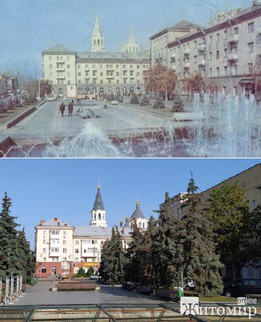Як майже за 40 років виросли ялинки на майдані Соборному в Житомирі. ФОТО