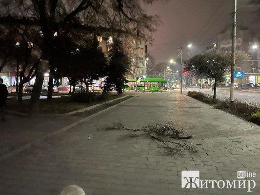 У Житомирі на вулиці Великій Бердичівській тільки що ледь не трапилася трагедія. ФОТО