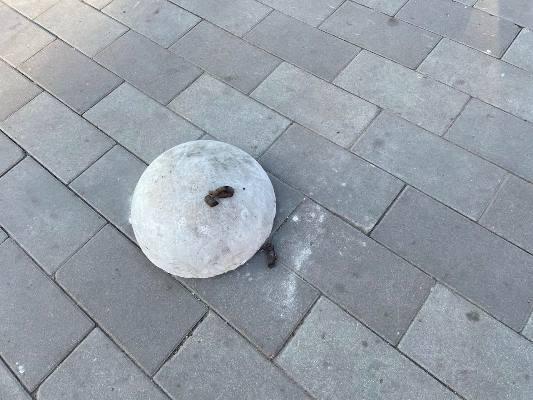 Хто і навіщо обставив житомирські тротуари обгирканими напівсферами з бетону поганої якості? ФОТО