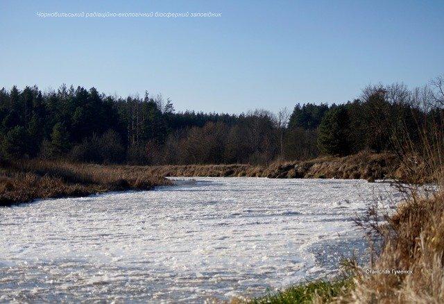 На Житомирщині річка Уж вкрилася кригою. ФОТО