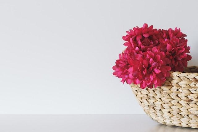 Цветы для извинений и для поздравлений