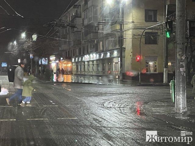 В Житомирі пройшов льодяний дощ. Через ожеледицю місто паралізувало. ФОТО. ВІДЕО