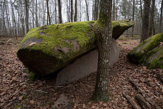 Камінне Село. Легенди та байки українського Стоунхенджа в лісах Полісся