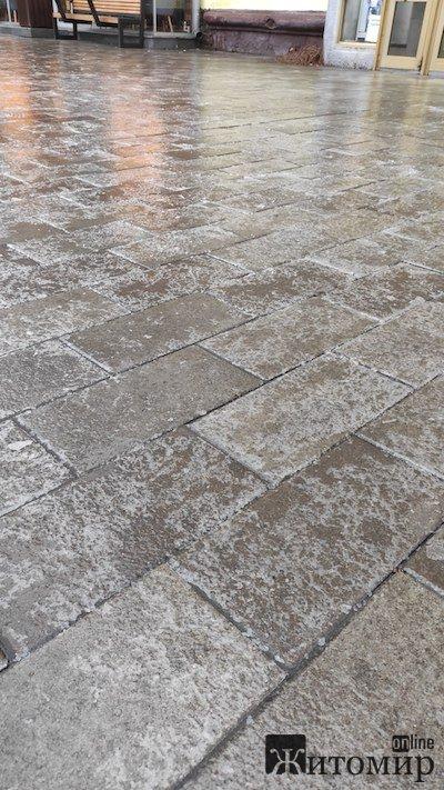 У Житомирі знову льодовий апокаліпсис. ФОТО