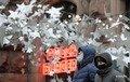 В Україні рекорд одужання від COVID за добу
