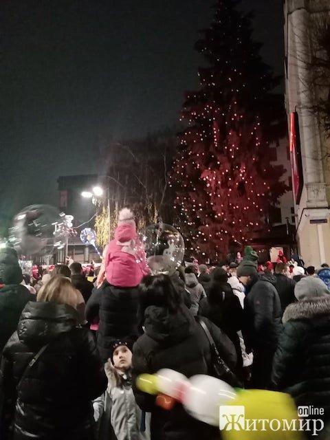 У Житомирі запалили новорічну ялинку. ФОТО