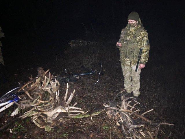 Житомирські прикордонники затримали трьох чоловіків, які збирали роги у зоні відчуження. ФОТО. ВІДЕО