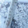 До лікарні в Житомирській області з обмороженням та переохолодження потрапили двоє чоловіків