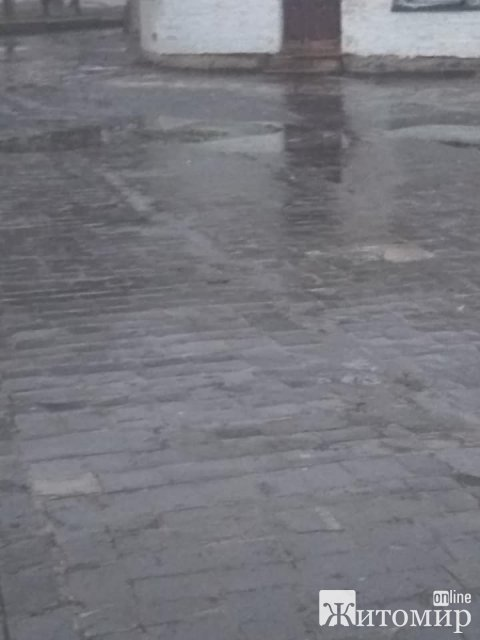 У Житомирі тротуари не посипані, діти не можуть дійти до шкіл. ФОТО