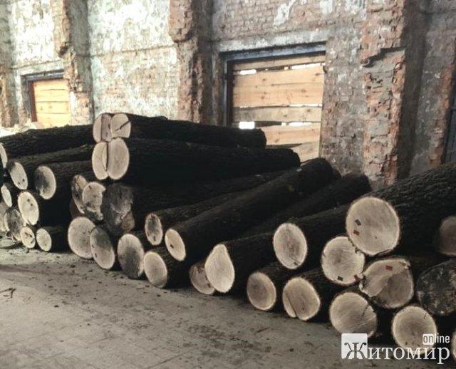 На Житомирщині викрили групу підприємців та посадовців лісгоспу, які займалися незаконними виготовленням лісоматеріалів та їх експортом. ФОТО