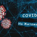 За добу в Житомирській області зареєстрували понад 300 нових хворих на коронавірус та два летальних випадки