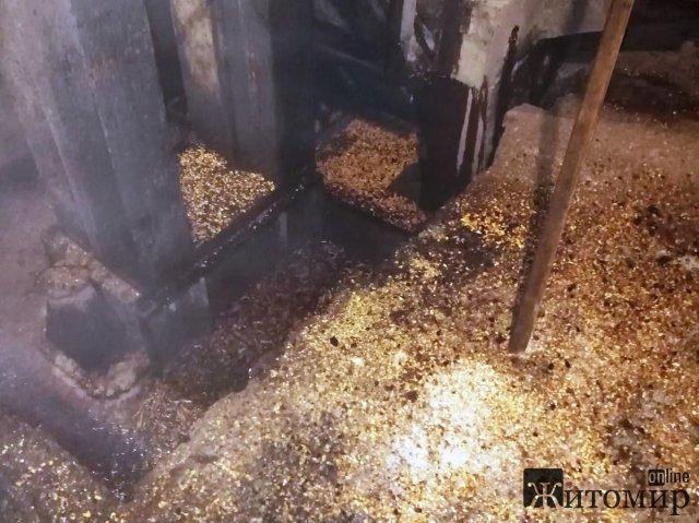 У селі Чуднівського району на території фермерського господарства горіло 3 тонни зернових. ФОТО