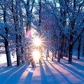 Типова новорічна погода: Укргідрометцентр дав прогноз до 1 січня