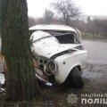 У Бердичеві ВАЗ врізався в дерево, травмований 22-річний пасажир. ФОТО