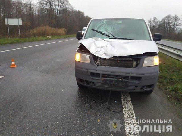 На Житомирщині мікроавтобус насмерть збив 75-річного пенсіонера. ФОТО
