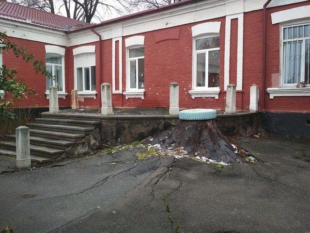 """Житомирське """"гетто"""" біля стоматологічної полікліники. ФОТО"""