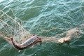 У Житомирському районі рибалки знайшли браконьєрську сітку та зателефонували до рибоохоронного патрулю