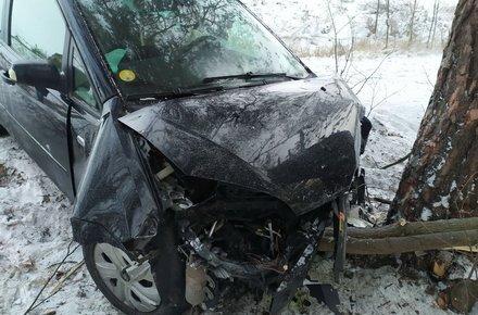 У Житомирському районі Ford злетів у кювет та врізався в дерево