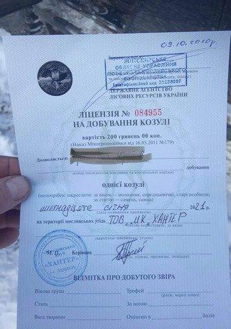 На Житомирщині в авто керівника мисливського господарства знайшли вбиту козулю. ФОТО