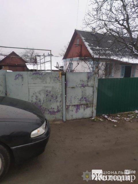 У Новограді-Волинському собака напав на 71-річну пенсіонерку, у потерпілої перелом ліктьової кістки. ФОТО