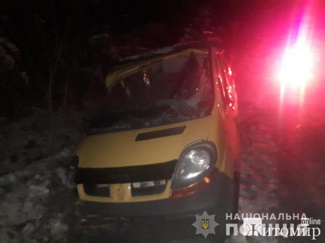 На Житомирщині Renault зіштовхнувся з ЗІЛ, з'їхав у кювет та врізався в дерево: є травмовані й загиблий. ФОТО