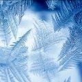 У Житомирі майже -20. Таких морозів не було вже давно