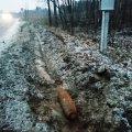 Неподалік Житомира водій маршрутки біля дороги помітив боєприпас. ФОТО