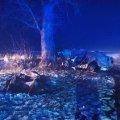 На дорозі в Житомирській області Skoda врізалась у дерево і загорілась, загинули три людини. ФОТО