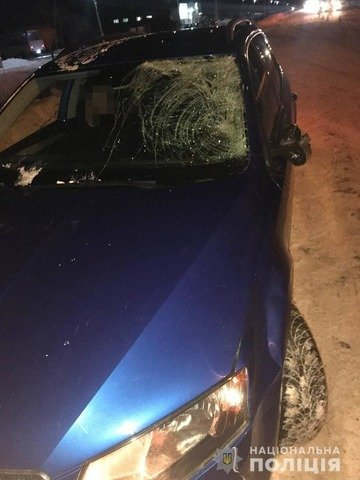 У Житомирському районі внаслідок ДТП травмувався пішохід. ФОТО