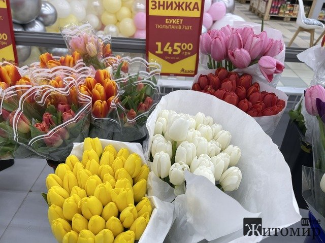 В житомирському «Ашані» вже продають свіжі живі тюльпани