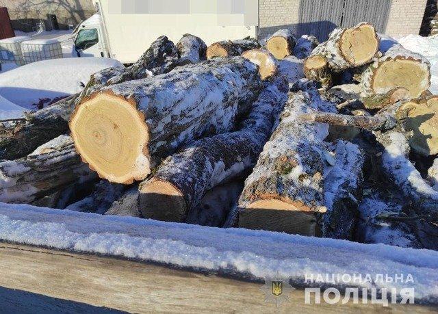 На Житомирщині 20-річний хлопець перевозив деревину без документів. ФОТО