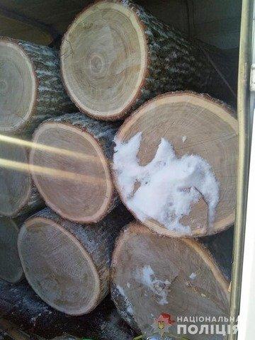 На Житомирщині затримали автомобіль з нелегальною деревиною. ФОТО