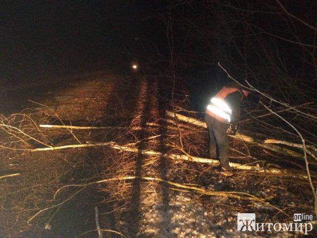 Уночі дорожники прибирали зі шляхів Житомирщини від зламаних негодою гілок та дерев
