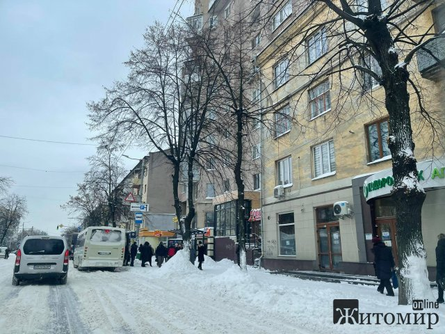 Житомир другий день у снігу. ФОТО