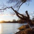 Весна наближається: в Україні після 20-градусних морозів потепліє до +10