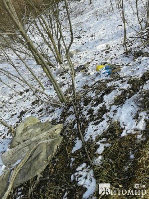 Сміття на узбіччі, ями на шляхах - дорога в Житомирській області. ФОТО
