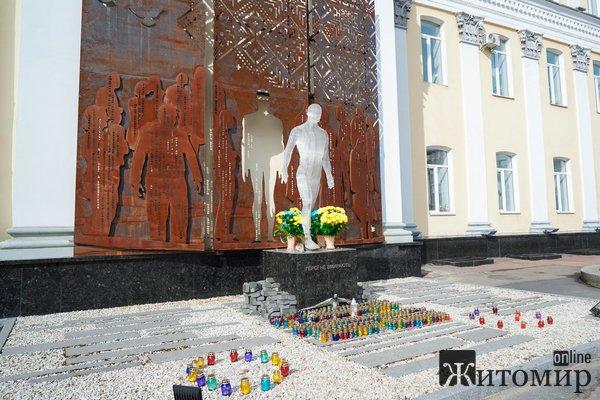 У Житомирі вшанували українських добровольців. ФОТО
