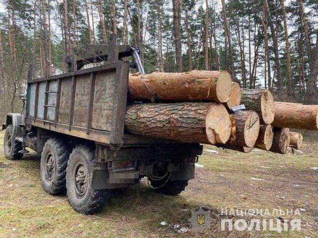 Житель Коростишева перевозив нелегальну деревину. ФОТО