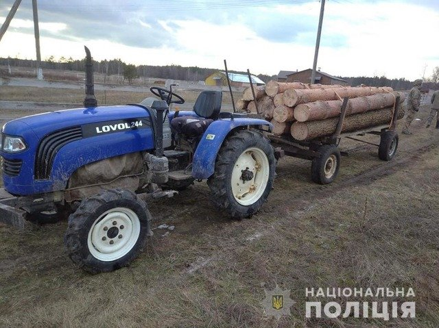 На Олевщині 47-річний чоловік перевозив нелегальну деревину. ФОТО